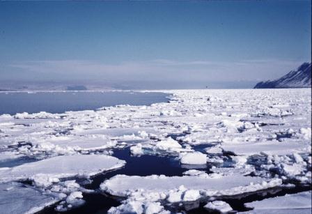 drivis, Adventfjorden;Longyearbyen