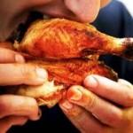 kylling 2