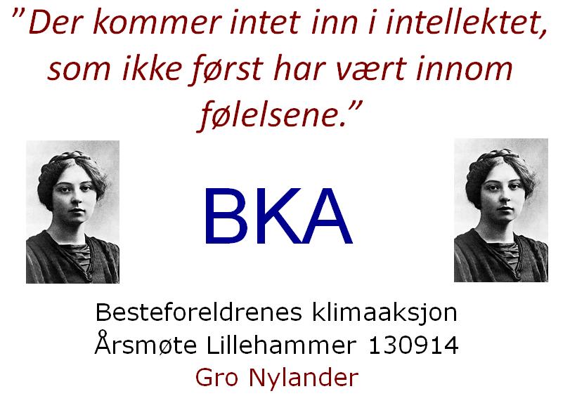 Et sitat fra Sigrid Undset var overskriften Gro Nylander valgte da hun talte til de andre besteforeldrene under årsmøtet.