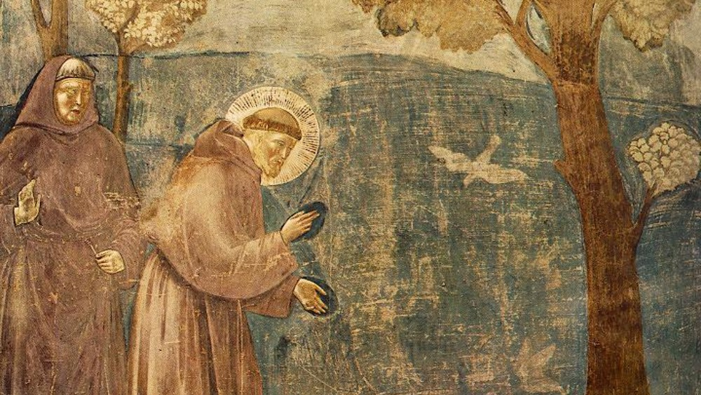 Frans mater fuglene, av Giotto.