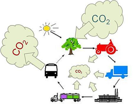 Biodrivstoff er en del av det naturlig kretssløp. Problemet er at syklusen tar lang tid. Og vi har ikke lang tid på oss for å få ned utslippene, minner brevskriverne fra Besteforeldreaksjonen om.