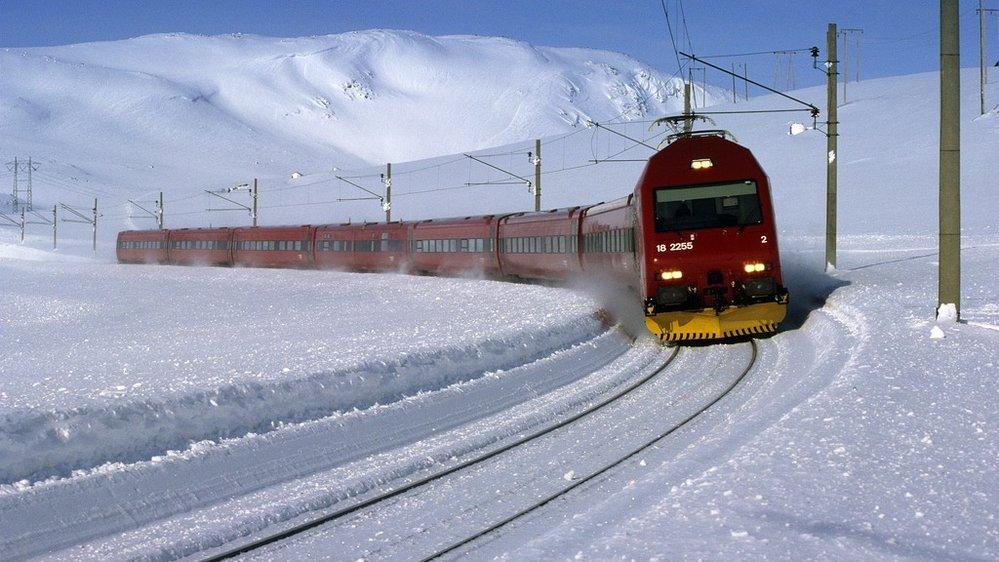 bergensbanen vidda