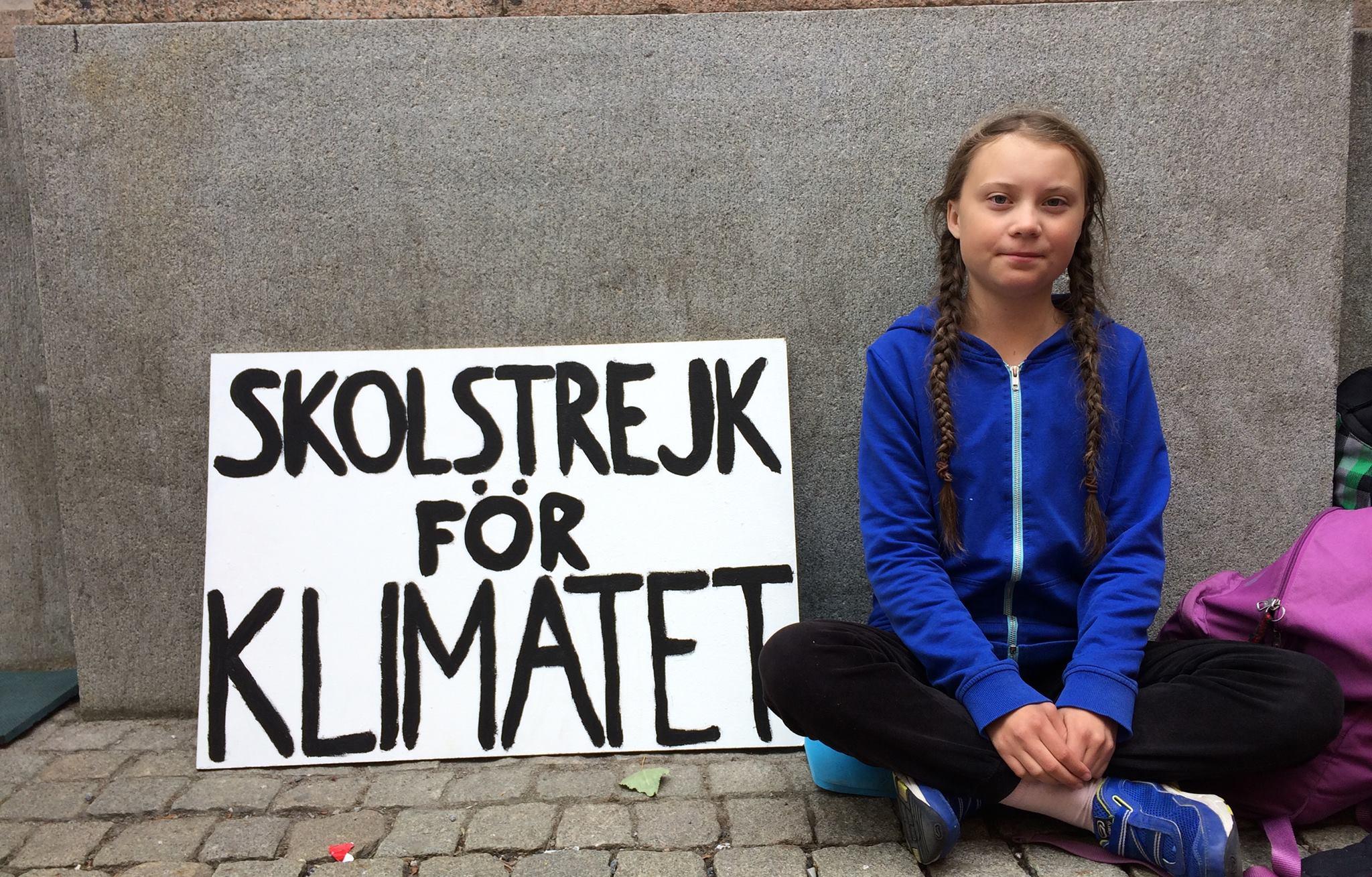 skolestrejk 3