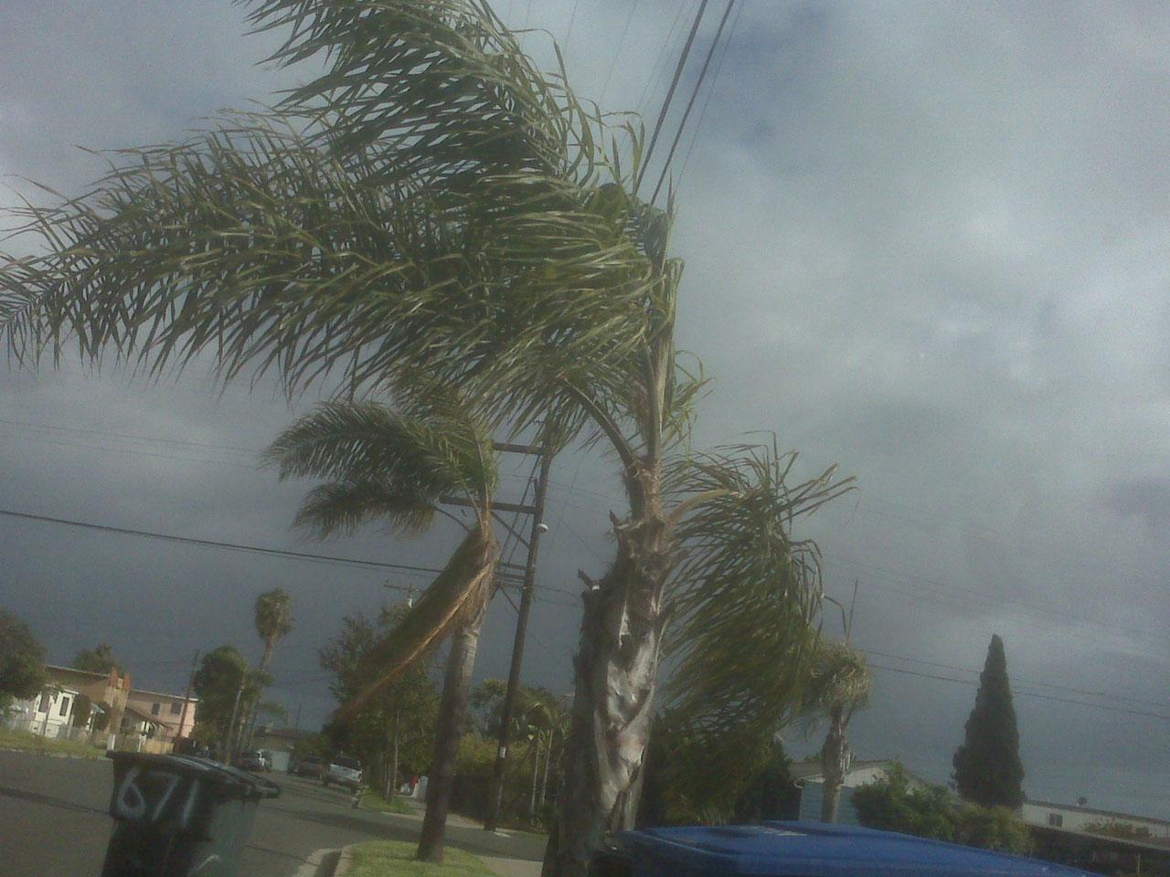 tropisk storm