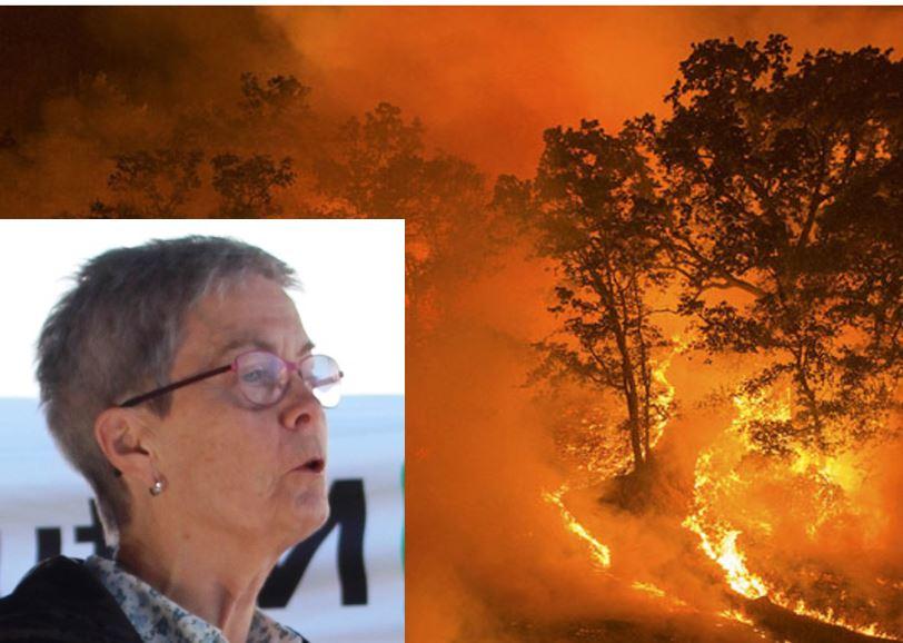 wenche skogbrann